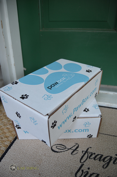 Its a Lab Thing Paw Box Labrador-5
