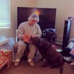 Abby-helping-grandpa-open-a-present.-itsalabthing-chocolatelab-ilovemylab