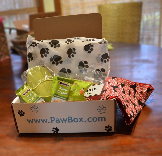 Its-a-Lab-Thing-Pawbox-December-003