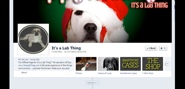 Its_a_Lab_Thing_how_to_add_pictures_to_facebook