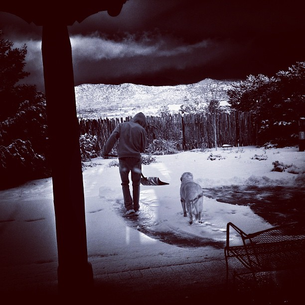 My-son-shoveling-and-his-dog-supervising-in-the-latest-snowfall