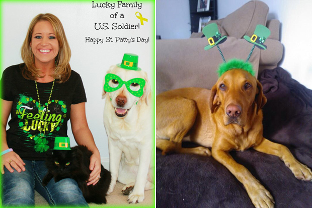 Its-a-Lab-Thing-Labrador-Irish-St-Patricks-day-004