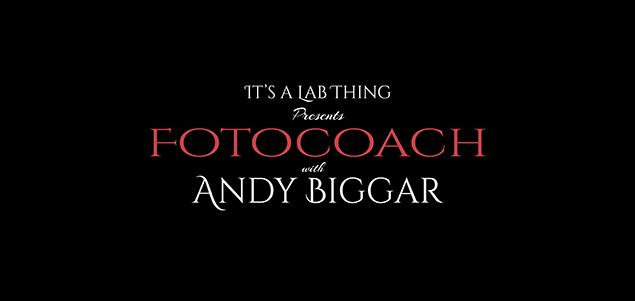 It's a Lab Thing Andy Biggar Photgraphy FotoCoach FI