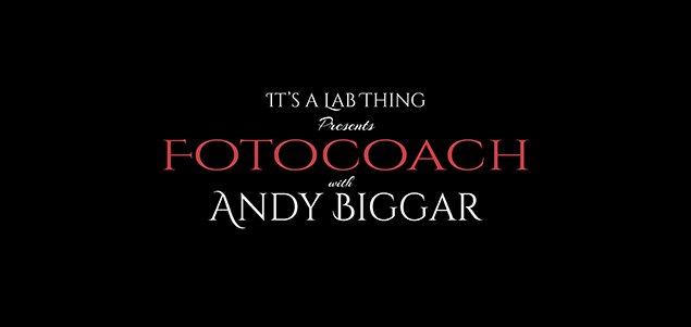 It's a Lab Thing Andy Biggar Photgraphy FotoCoach FI