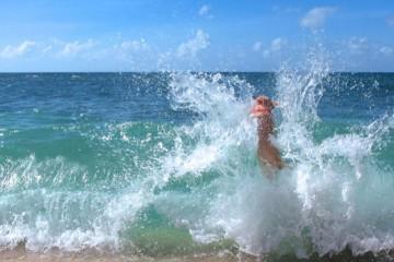 Its-a-Lab-Thing-Labrador-Hank-Surfer-Beach-008