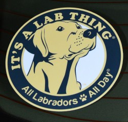 Its-a-Lab-Thing-Labrador-Sticker-001