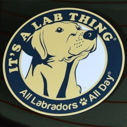 Its-a-Lab-Thing-Labrador-Sticker-001400