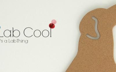 Labrador-Pinboard It's a Lab Thing Cork board Get Cork