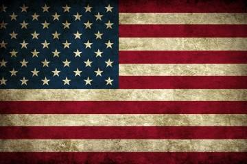 grunge_american_flag_labradors
