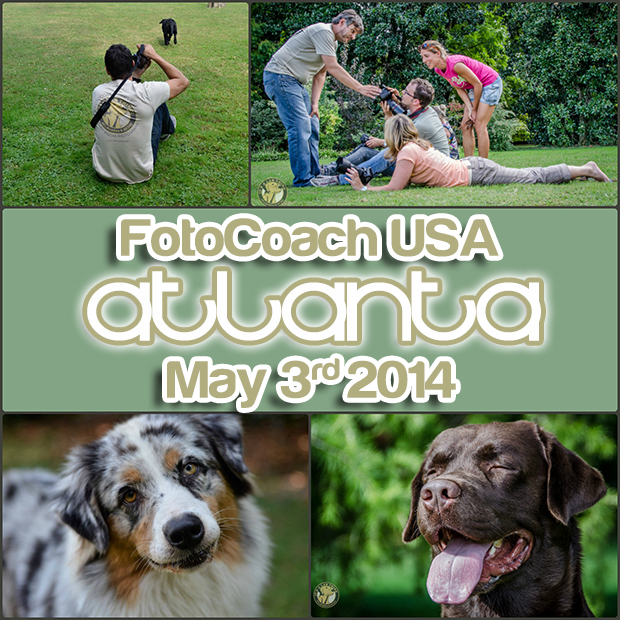FotoCoach Dog Photography Course USA in Atlanta web