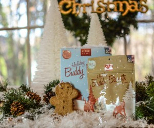 Yummy Holiday Gingerbread Buddy Biscuits by Cloud Star – The Story