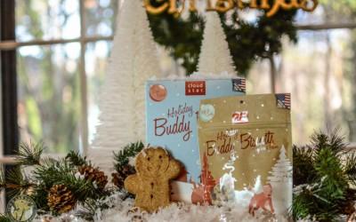 Cloud Star Buddy Biscuits Bingerbread Dog treats -12