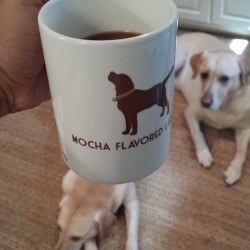 Labrador coffee mug chocolate lab mocha