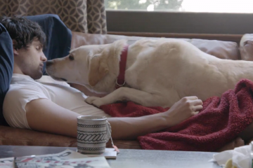 Budweiser_Labrador_Be_responsible_Viral_Video_Commercial_Anit_Drinking_and_Driving