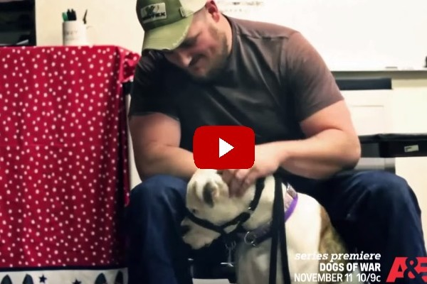 A&E_Dogs_of_War_Show_About_Rescuing_Homeless_Dogs_and_training_them_for_combat_veterans_with_PTSD
