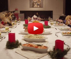 Viral Video Dogs and Cat Holiday Family Feast is Hilarious