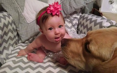 008-Cute-Labradors-with-babies-and-kids-pictures-sweet-