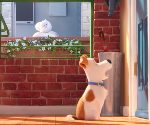 The Secret Life of Pets Movie Trailer Nails it. Can't Wait!